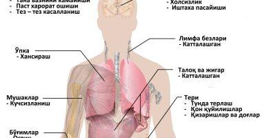 Оқ қон – лейкоз қандай касаллик.