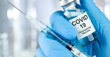 Vaksinalar qanday tayyorlanishini bilasizmi?